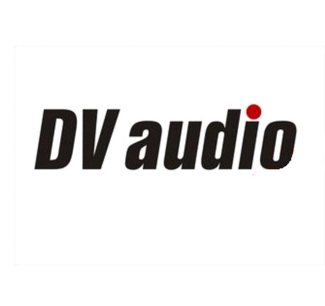 Фото Поступление на склад продукции DV audio