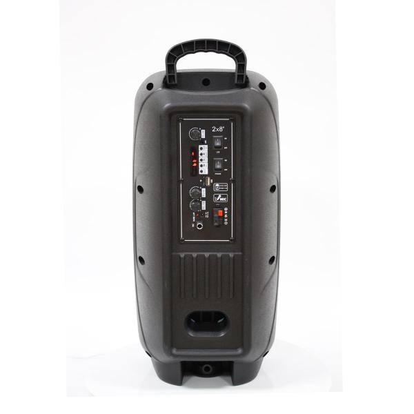 Фото Автономная акустическая система BIG220ENCORE USB/MP3/FM/BT/TWS + 2pcs VHF mic L