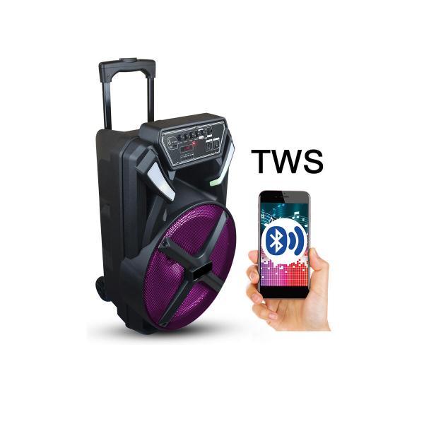 Фото Автономная акустическая система BIG230BAT USB/MP3/FM/BT/TWS + 2pcs VHF mic L