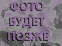 ФЛО-Цілунок Долі