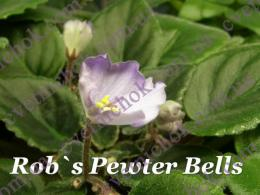 Rob`s Pewter Bells