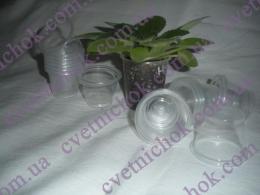 Пластиковый стакан 42 мл. для мини сенполий