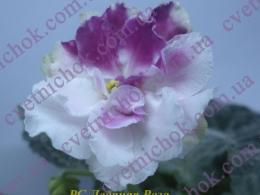 РС-Ледяная Роза
