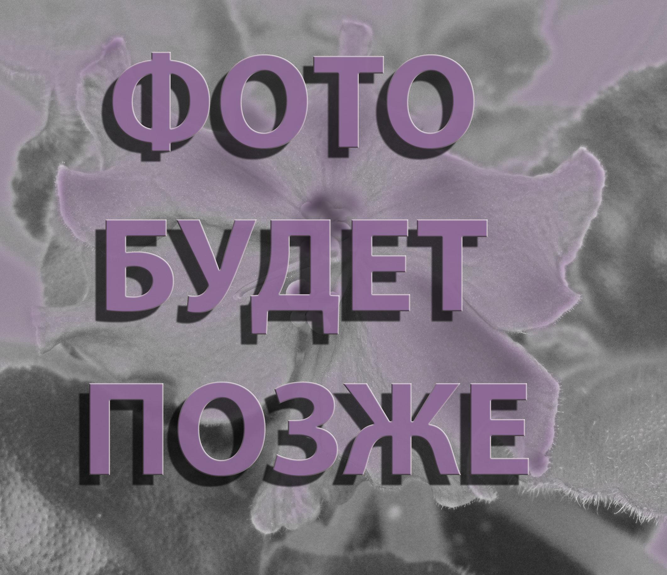 КсП-Жемчужинка