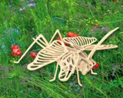 Деревянная сборная модель   Саранча