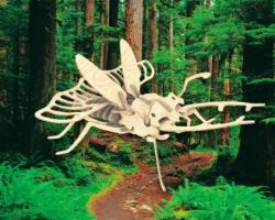 Деревянная сборная модель Жук-олень