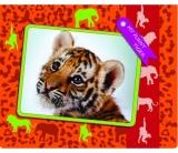 Папка на резинке COOLFORSCHOOL My Funny Tiger В5 CF31642-02
