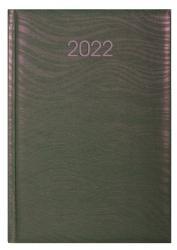 Ежедневник датированный А5 SEA розово-зеленый хамелеон ECONOMIX E21814-09