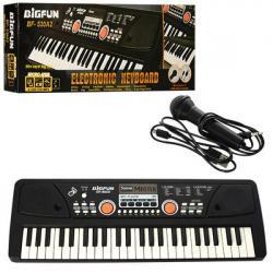 Синтезатор (49 клавиш, микрофон, USB, mp3, запись, Demo, питание от сети) BF-530A2