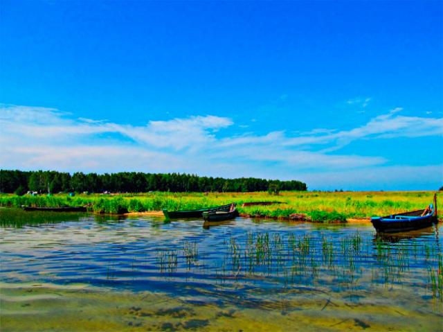 Фото Шацкие озера и Беловежская Пуща {корп} - основной