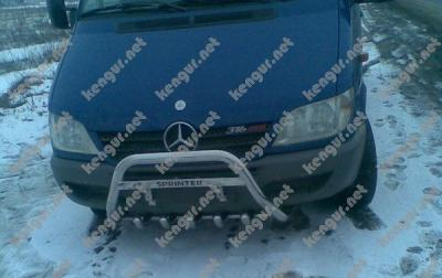 Фото Защита передняя, кенгурятник Mercedes Sprinter грилем и с надписью