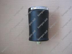 Пневматическая подушка задняя на BMW X5 E53 37126750355 37126750356