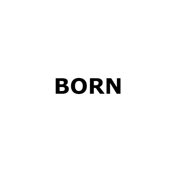 Фото Born