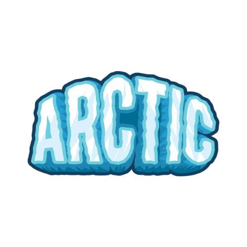 Фото ARCTIC
