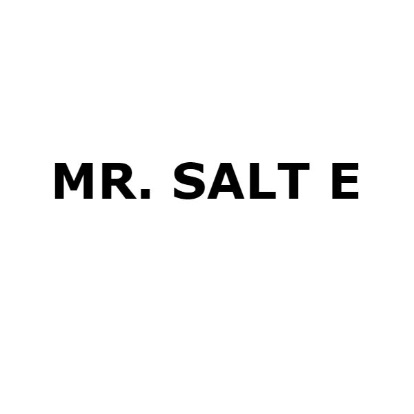 Фото MR. SALT E
