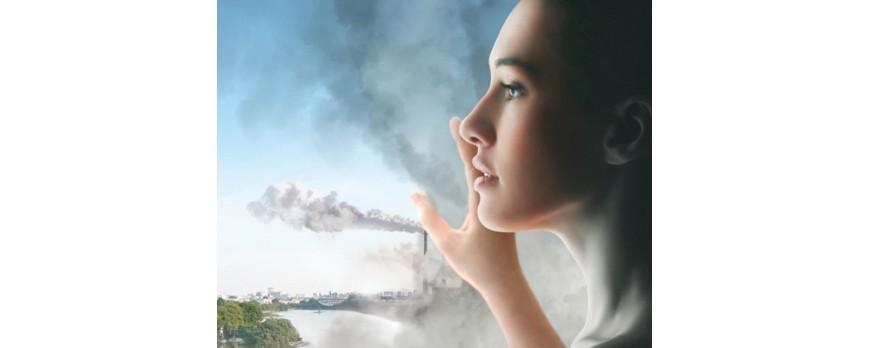 Фото Что такое ANTI-POLLUTION?✒