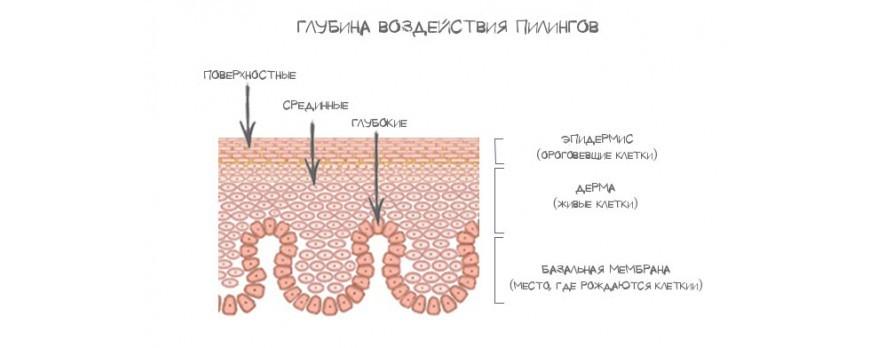 Фото Все о пилингах. Часть ➄. Глубина пилинга — фенол, ТСА, гликолевая и другие АХА кислоты.