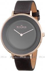 Женские часы Skagen SKW2216