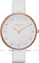 Женские часы Skagen SKW2291