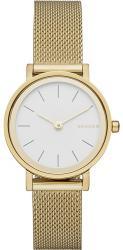 Женские часы Skagen SKW2443