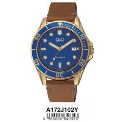Мужские часы Q&Q A172J102Y