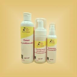 """Набор для жирной, склонной к воспалениям кожи лица """"Classic Maxi"""" Nikol Professional Cosmetics"""