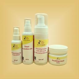"""Набор для жирной, склонной к воспалениям кожи лица """"Premium Normal"""" Nikol Professional Cosmetics"""